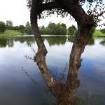Plongée à Montaigu les Bois